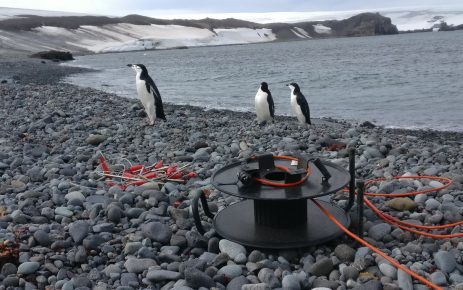 geophysical identification of permafrost in Antarctica using the resistivity meter